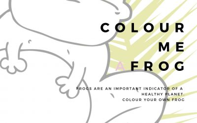 Colour A Frog Poster – Kids and Families